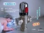 DN20別墅冷熱水恒溫設備